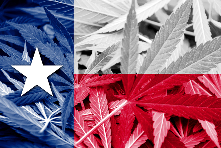 Texas flag over marijuana